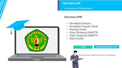 Photo of Passing Grade Terbaru UPR 2020/2021 (Universitas Palangkaraya)
